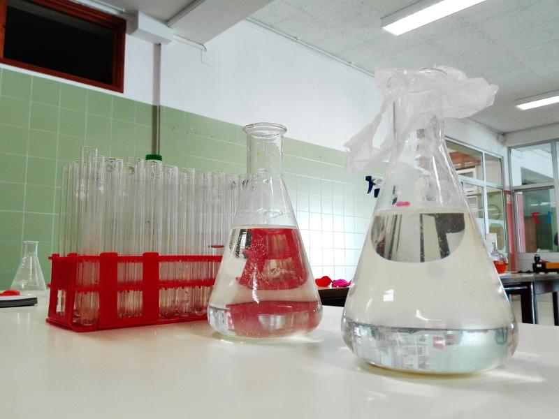 Semana da Ciência: Workshops no Lab Aberto Fab Lab, dia 24 de novembro